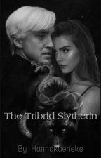 The Tribrid Slytherin  (Draco Malfoy) by Hannakueneke