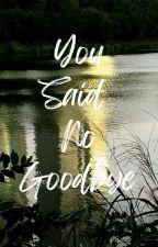 You Said No Goodbye by winterswyt
