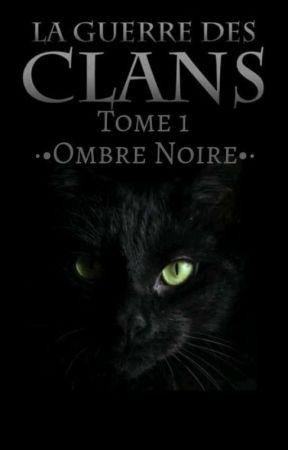 FF LGDC Cycle 1~Livre 1. Ombre Noire by LollipopPlume