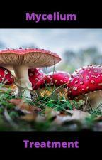 The Mycelium Treatment. (Hermitcraft AU) by Catdominator47