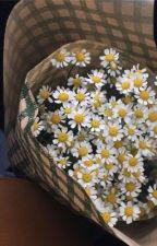 Flower shop   Zarry  by Graepie
