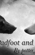 Padfoot and snout  by lilsterthequeen