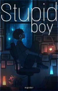 Stupid Boy cover