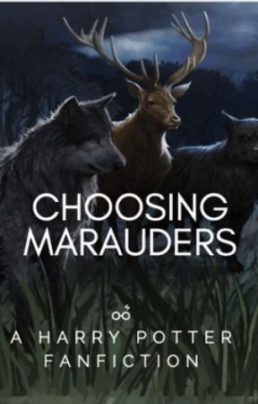 Choosing Marauders *DISCONTINUED* by azkabansfinest__