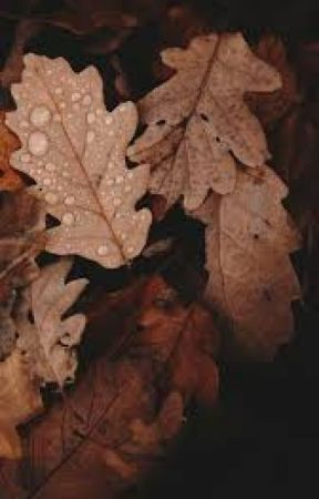 fallin' for you | zach herron by windypatterson