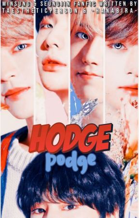 ❝HODGEPODGE❞ ⌗ minsung, seungjin by taestheticperson
