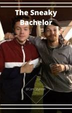 The Sneaky Bachelor (Larry Fanfic) by Cam_stylison