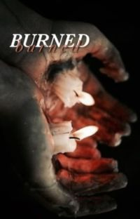 Burned Dabi x Hawks x Reader cover