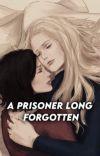 A prisoner long forgotten  cover