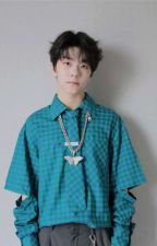 Soloist || He Xinlong x Female Reader  by Boystory_AOT