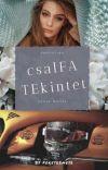 csalFA TEkintet cover