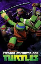 TMNT x Male reader by ReaperNero