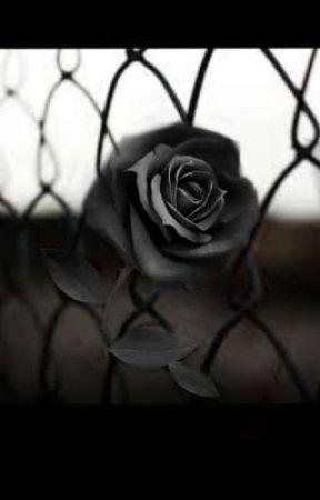 Une magnifique rose noire... by ladroguecmal