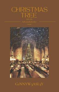Harry Potter OS Adventskalender  cover