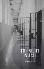The Night in Jail by amu0430