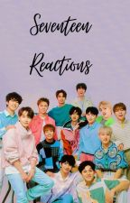 Seventeen Reactions by mintokyoon