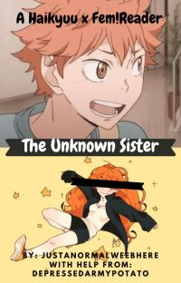 🦊The Unknown Sister🦊 {Haikyuu x Fem!Reader} cover
