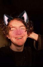 catboy!typo x reader by thehunnibunni