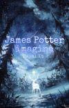 James Potter İmagine  cover