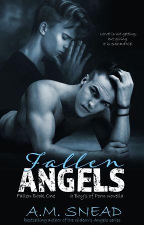 Fallen Angels: Fallen Book 1 (a Boys of Porn novella) by AMS1971