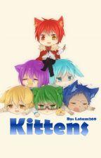 חתלתולים by lotam269