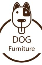 What is the best furniture for dogs ? by Julalak19