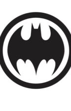 The new bat in Town (Male *Batman* Reader x DC Harem) by PoMan2405