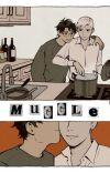 Muggle - DRARRY AU cover