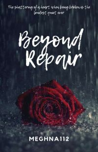 Broken Beyond Repair( Discontinued)  cover