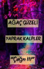 YAPRAK KALPLER-III by agacguzeli