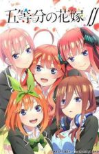 Quintessential Quintuplets × male reader one-shots (Gotoubun No Hanayome) by Quint_lover