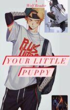 Your Little Puppy (B.KatsukixWolfReader) by zWeebiez