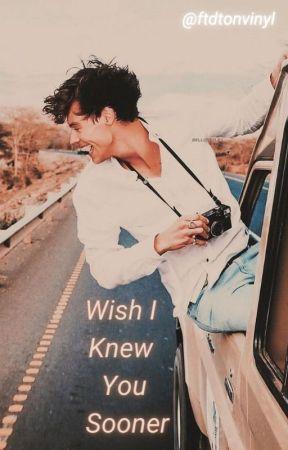 Wish I Knew You Sooner by ftdtonvinyl