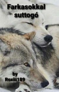 Farkasokkal suttogó cover