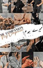 My companion   میرےہمدم by 7Hazel