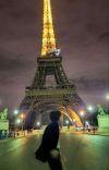 Surrogate Omega ; KookTae  cover