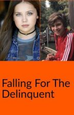 Falling for the Delinquent  by Local_Crack_Whore