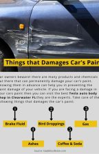 Things that Damage Car Paint by grayrussell