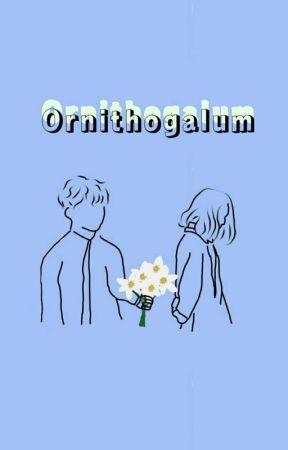 ORNITHOGALUM [96 LINE SEVENTEEN NCT X OC] by moonsunturtle