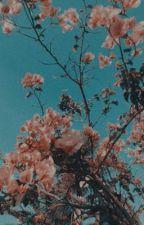 ❥Flower Girl  (Sapnap x Oc) by hxneysss