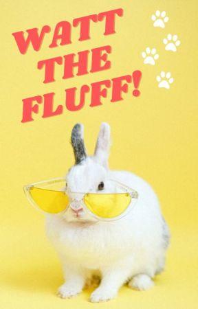 Watt the Fluff! by WattPetts