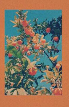 meyve bahçeleri, by usagichy