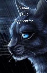 Name that Apprentice! cover