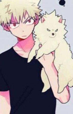 An angry Pomeranian|A Bakudeku story by i_ship_bakudeku