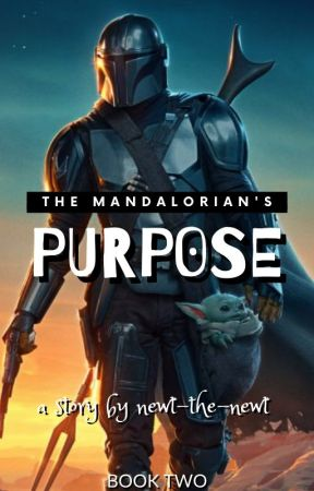 The Mandalorian's Purpose by newt-the-newt