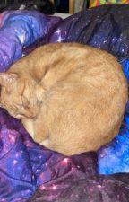 Subzero (Countryhumans AU) by MoonyWritesGarbage