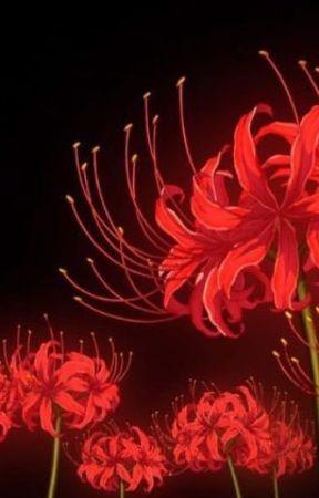 ^زنبق العنكبوت الاحمر في منتصف الليل ^ by rando_sama