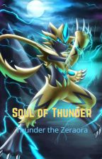 Soul of Thunder by Zeraoraman