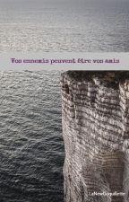 Vos ennemis peuvent être vos amis... by LaNewCoquillette