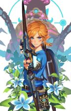BOTW x Reader by lucy_15a
